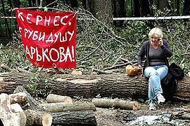 """Немецкие """"зеленые"""" пожалуются ЕС на Кернеса"""