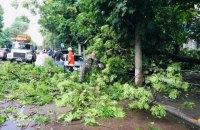 Житомиром прокотилася злива з градом, вітер ламав та виривав дерева і кущі
