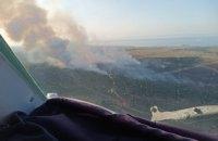 На Херсонщині рятувальники другий день гасять пожежу на території лісництва