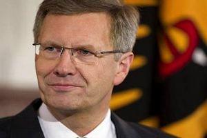 Правящая фракция в бундестаге готова лишить президента иммунитета
