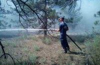 Вблизи Запорожской АЭС загорелась лесопарковая зона