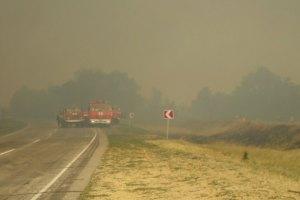 На Херсонщині погасили масштабну лісову пожежу
