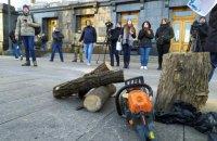 Учасники акції на захист Протасового Яру принесли під Офіс президента дрова
