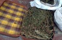 У жителя Донецької області знайшли валізу конопель
