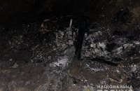 Самолет, который накануне упал на Киевщине, был изготовлен кустарным способом