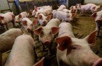 Рада ухвалила євроінтеграційний закон про ветеринарну медицину