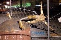 """Cага о взаимоотношении фанов """"Мальме"""" и Ибрагимовичем достигла апогея: фанаты повалили статую футболиста"""