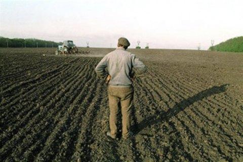Средняя цена гектара земли сельскохозяйственного назначения - около 33 тысяч, - министр агрополитики
