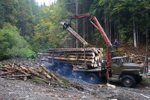 Порошенко подписал закон о моратории на экспорт леса
