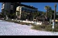 В Италии открыли пляжные библиотеки