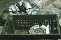 В Никополе налоговики «накрыли» подпольный завод по производству консервов
