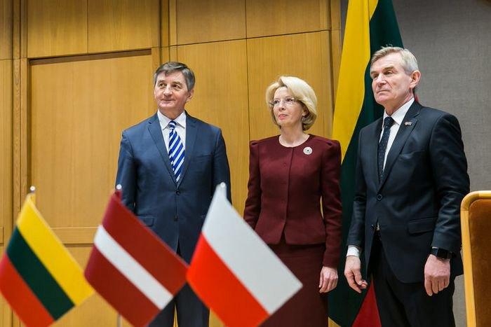 Нестоит обращать внимание назаявления стран Балтии иПольши— Разуваев