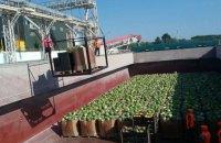 Баржа с арбузами пришвартовалась под Киевом