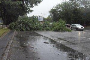 Завтра на востоке Украины объявлено штормовое предупреждение