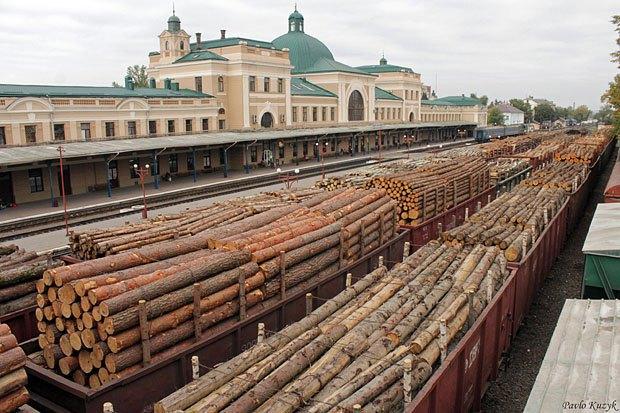 Вагони зі зрубаним лісом на залізничному вокзалі Івано-Франківська