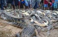 """В Індонезії розлючений натовп убив 300 крокодилів, щоб """"помститися"""" за односельчанина"""