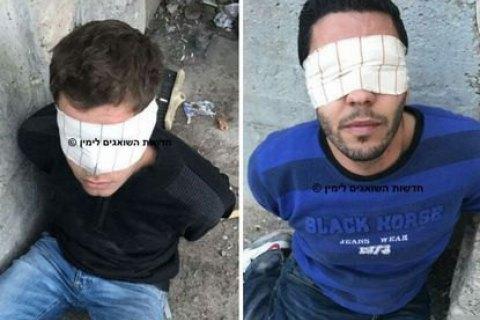 В Израиле арестованы подозреваемые в поджоге леса