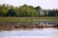 На Кинбурнской косе для гнездования редких и исчезающих видов птиц построен искусственный остров
