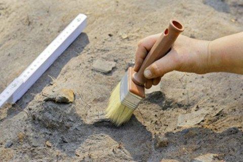 На Тернопольщине во время весенне-полевых работ случайно нашли артефакты возрастом до пяти тысяч лет