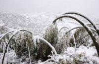 В Китае из-за снегопадов погибли тринадцать человек