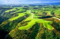Новая Зеландия намерена уничтожить всех хищников на своей территории к 2050 году