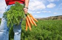 Час господарів: аграрії потрібні не лише в полі, а й у владі