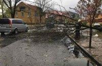 Из-за непогоды в Ивано-Франковской области погибли два человека, один пропал без вести