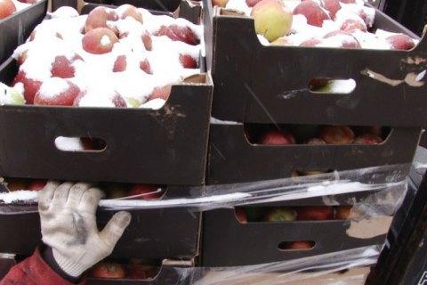 У Росії знищили 60 тонн польських яблук