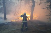 Слідство розглядає чотири версії виникнення пожеж на Луганщині