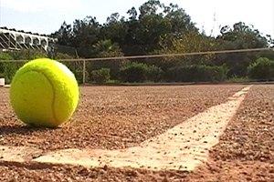 """Серена Уильямс - в """"элитном клубе"""" теннисисток"""