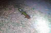 Киевлянин выловил в озере рабочий гранатомет