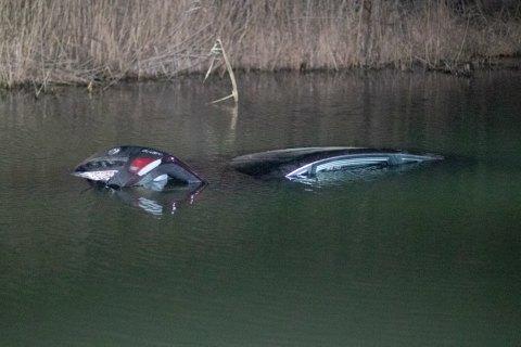 Під Ірпенем через собаку автомобіль з 9-річною дитиною в салоні опинився у річці (ВІДЕО)
