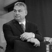 Якою має бути відповідь Орбану і не лише