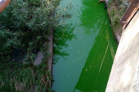 """Разом з київськими фонтанами хулігани """"пофарбували"""" у зелений колір річку Либідь"""