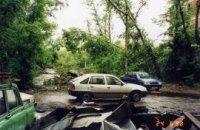 В Днепропетровске из-за ливней и шквального ветра падают деревья