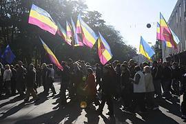 Киевская Батькивщина объявила голодовку