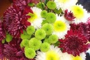 Напередодні Дня знань квіти подорожчали вдвічі