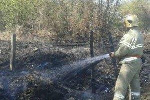 Ситуация с пожаром в Чернобыльской зоне усложнилась, - Аваков