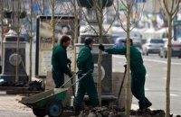 Киев закупил каштаны у ранее оскандалившегося поставщика
