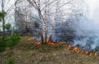 Біля Станиці Луганської загорівся замінований ліс, одна людина поранена (оновлено)