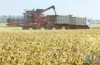 Украина четвертый год подряд собирает больше 60 млн тонн зерна