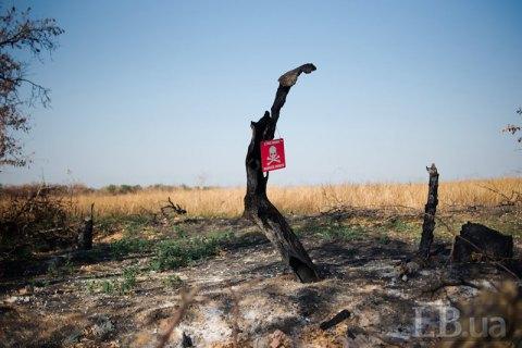В Луганской области мать с сыном подорвались на взрывчатке, - ОБСЕ