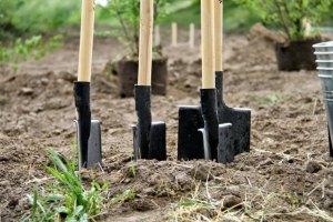 У БЮТ повідомили про усунення Радою останньої перешкоди для продажу землі