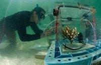 Екологи збільшили втричі мережу моніторингу кислотності океанів