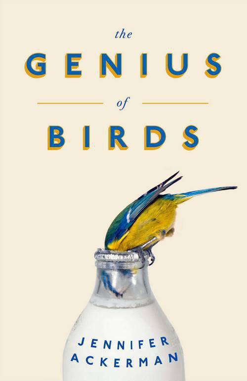 Genius of Birds Дженнифер Аккерман. Автор обложки: Джек Смит