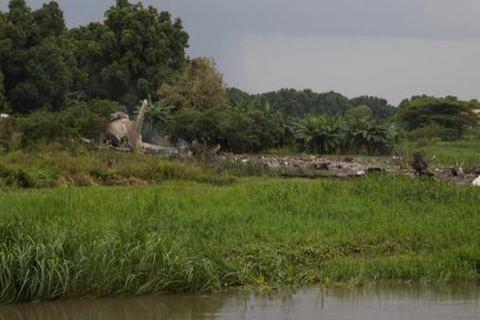 В Южном Судане разбился Ан (обновлено)