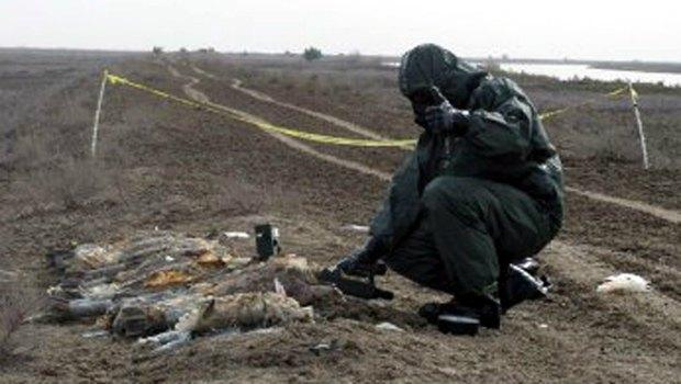 Датский солдат изучает снаряд, в котором обнаружены следы боевых отравляющих веществ