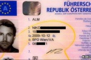 Австриец сфотографировался на права с дуршлагом на голове