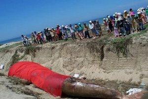 Во Вьетнаме устроили похороны кита
