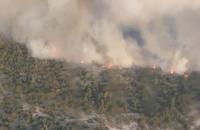 На військовому полігоні в Чернігівській області загорівся ліс